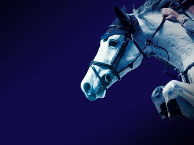 Ljungby Riders Game 29 – 31/3